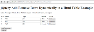 add remove rows dynamically1